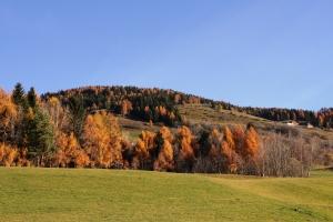 Ausblick vom Marchnerhof